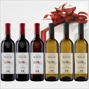 Trentino confezione E. MACH da 6 BOTTIGLIE