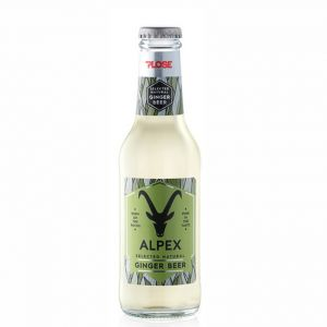GINGER BEER Alpex PLOSE 20 cl. vetro a perdere - Scatole da 24 bottiglie
