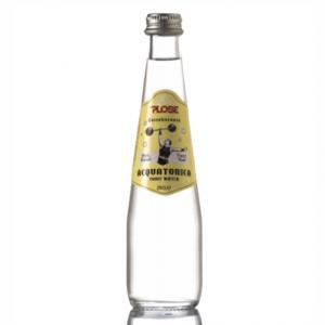 TONICA PLOSE 25 cl. vetro a perdere - Scatole da 24 bottiglie
